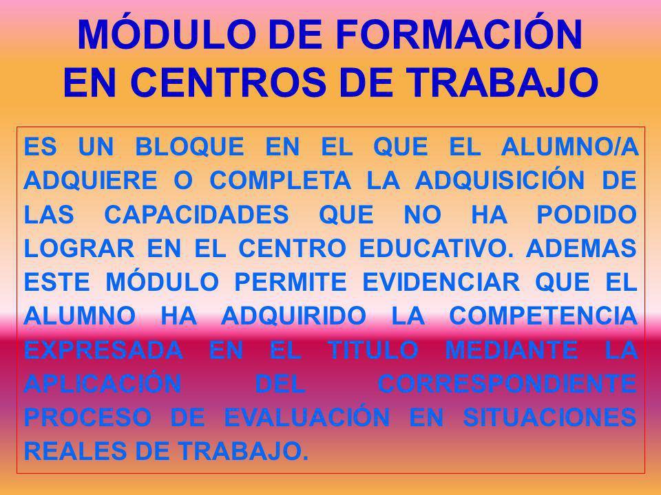 MÓDULO DE FORMACIÓN EN CENTROS DE TRABAJO