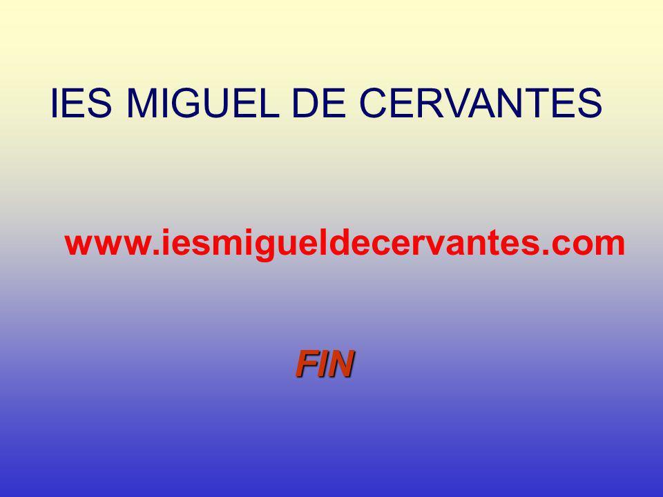 IES MIGUEL DE CERVANTES