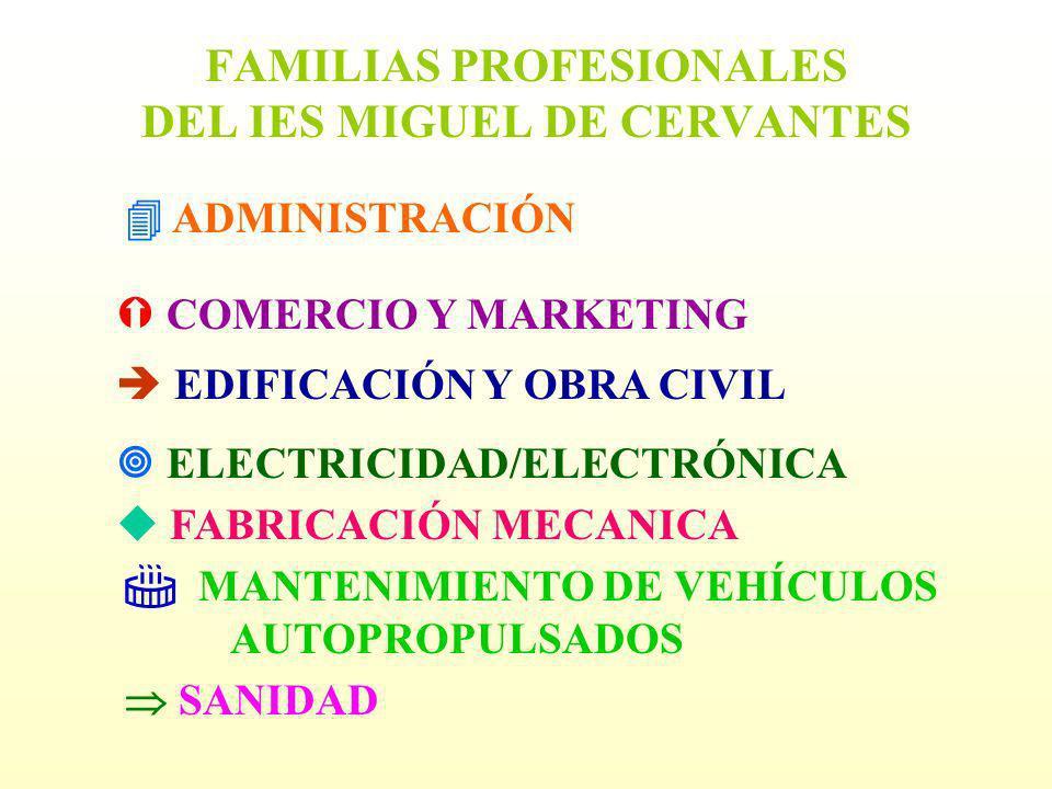 FAMILIAS PROFESIONALES DEL IES MIGUEL DE CERVANTES