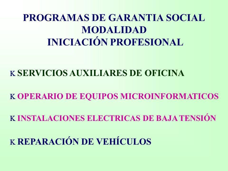 PROGRAMAS DE GARANTIA SOCIAL MODALIDAD INICIACIÓN PROFESIONAL