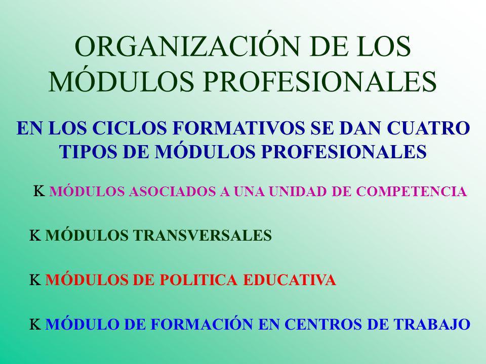 ORGANIZACIÓN DE LOS MÓDULOS PROFESIONALES