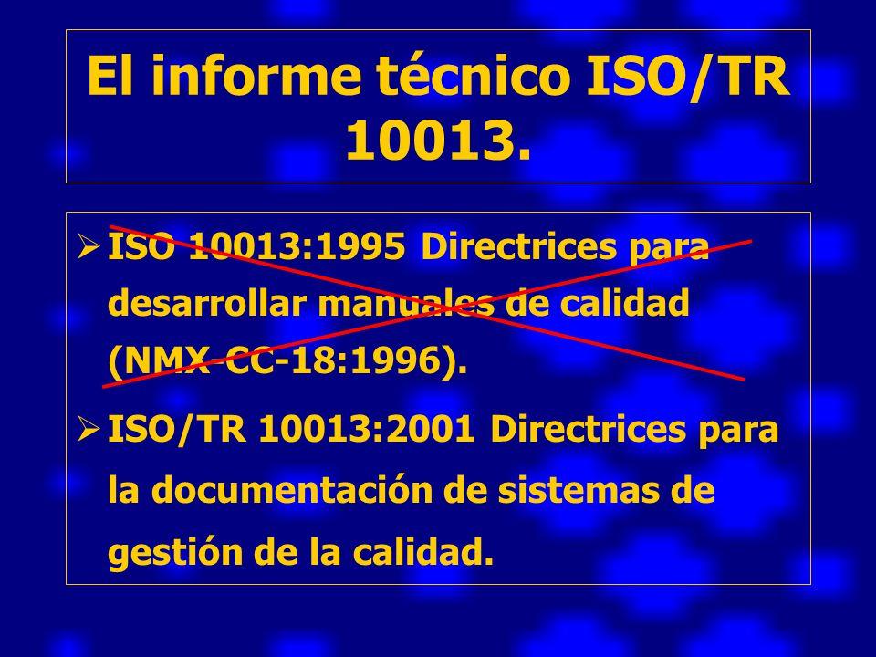 El informe técnico ISO/TR 10013.