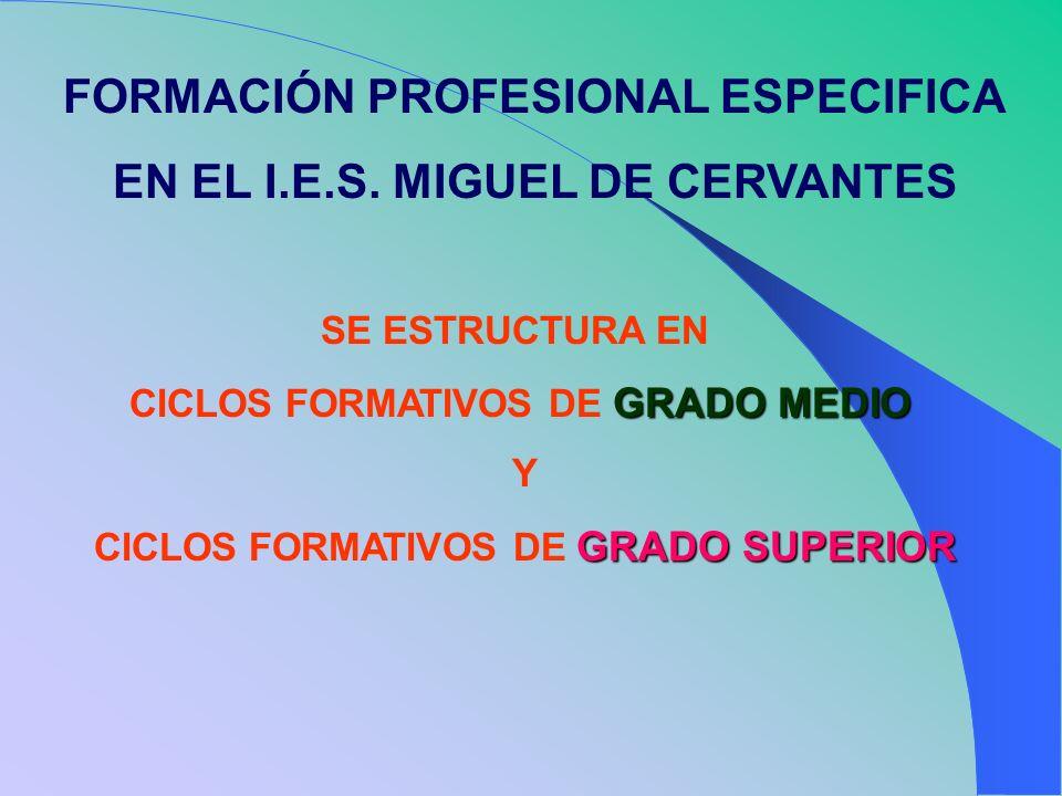FORMACIÓN PROFESIONAL ESPECIFICA EN EL I.E.S. MIGUEL DE CERVANTES