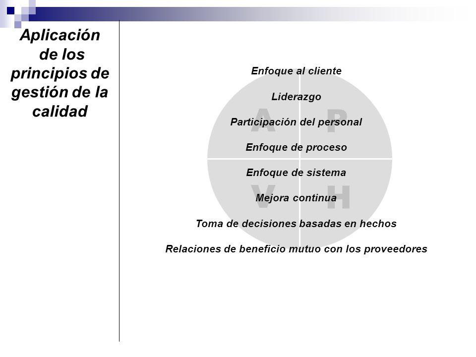 A P V H Aplicación de los principios de gestión de la calidad