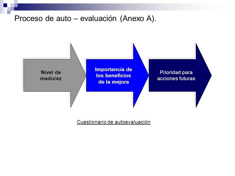 Proceso de auto – evaluación (Anexo A).