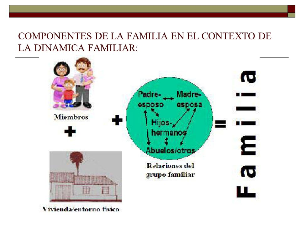 COMPONENTES DE LA FAMILIA EN EL CONTEXTO DE LA DINAMICA FAMILIAR:
