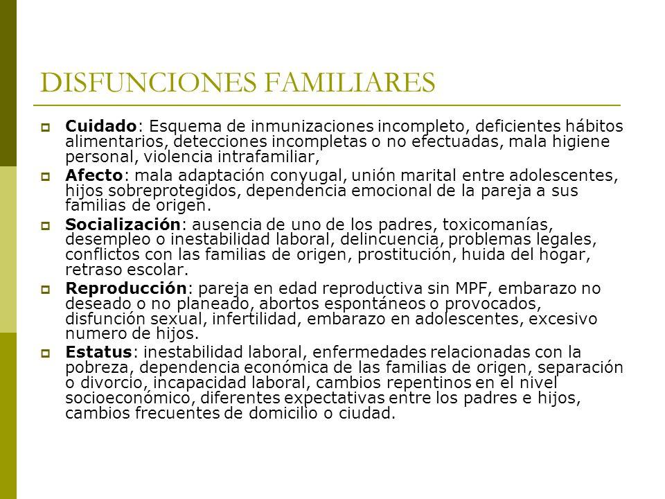 DISFUNCIONES FAMILIARES