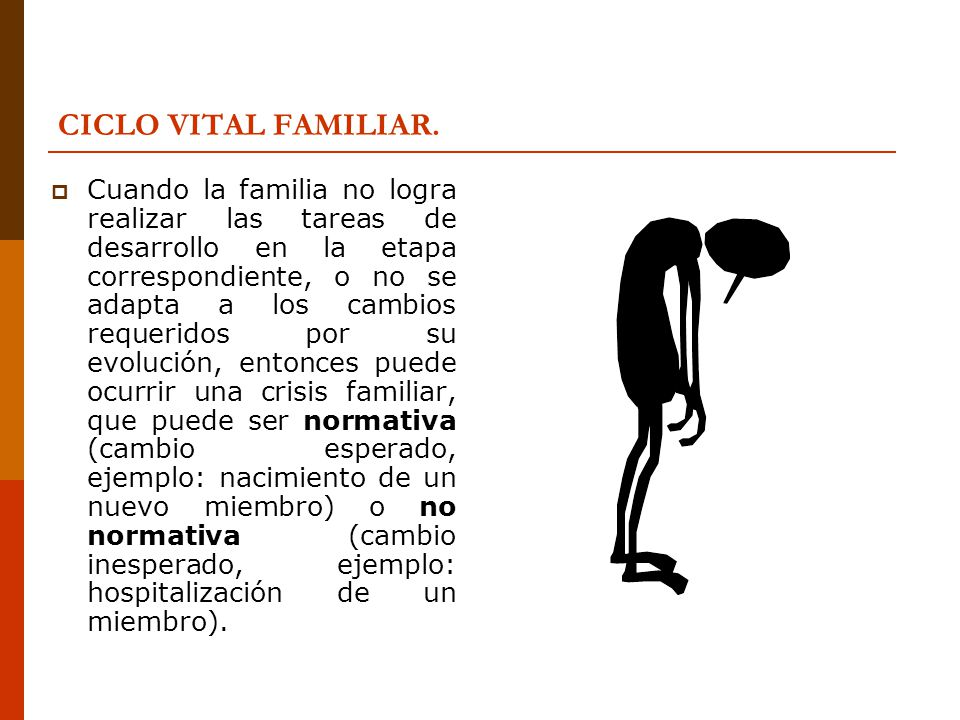 CICLO VITAL FAMILIAR.
