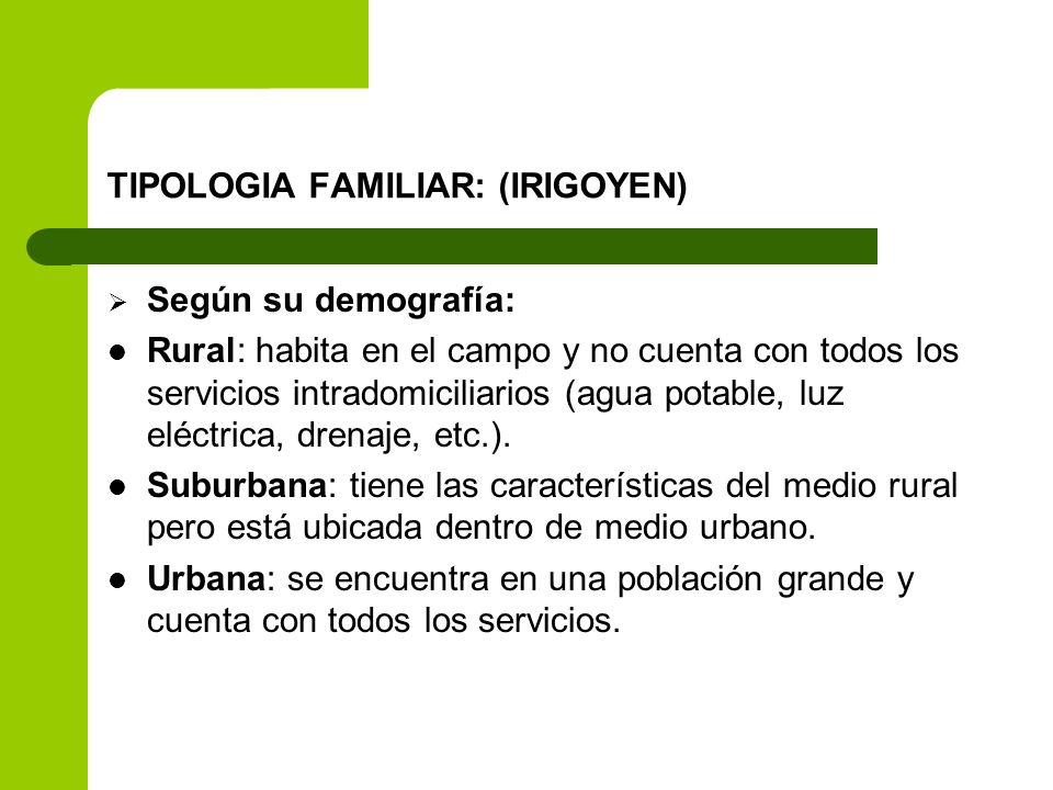 TIPOLOGIA FAMILIAR: (IRIGOYEN)