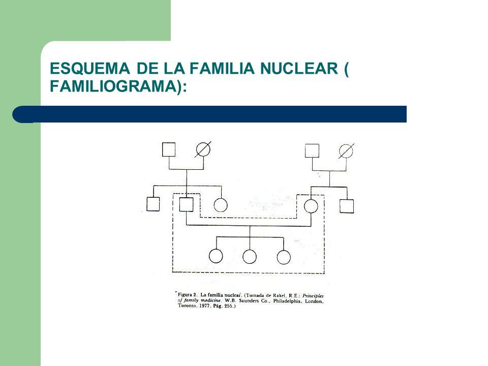 ESQUEMA DE LA FAMILIA NUCLEAR ( FAMILIOGRAMA):