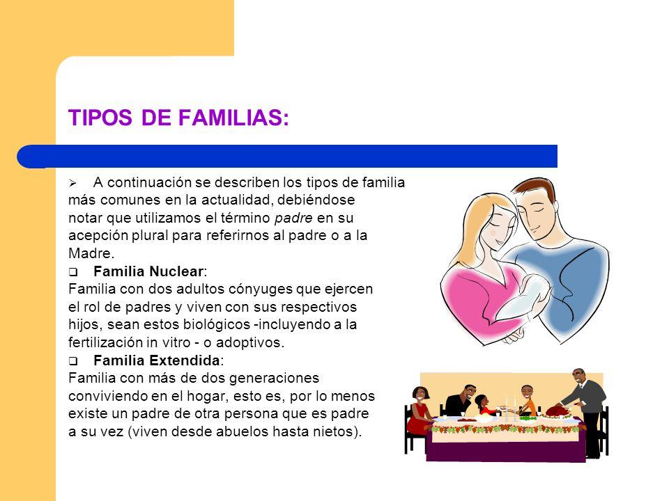 TIPOS DE FAMILIAS: A continuación se describen los tipos de familia