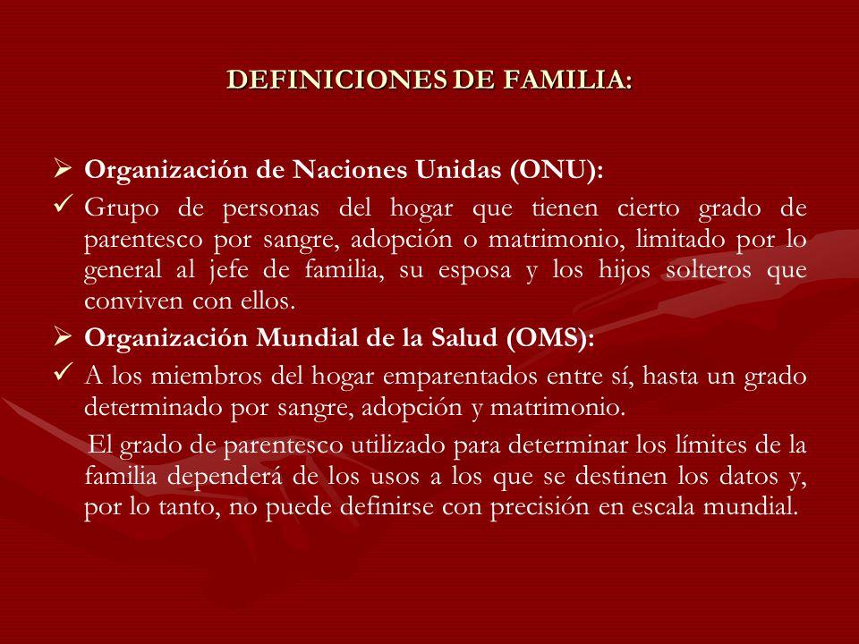 DEFINICIONES DE FAMILIA: