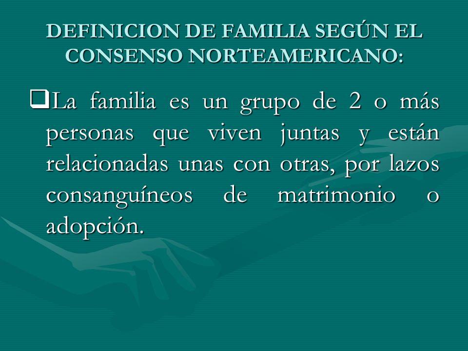 DEFINICION DE FAMILIA SEGÚN EL CONSENSO NORTEAMERICANO: