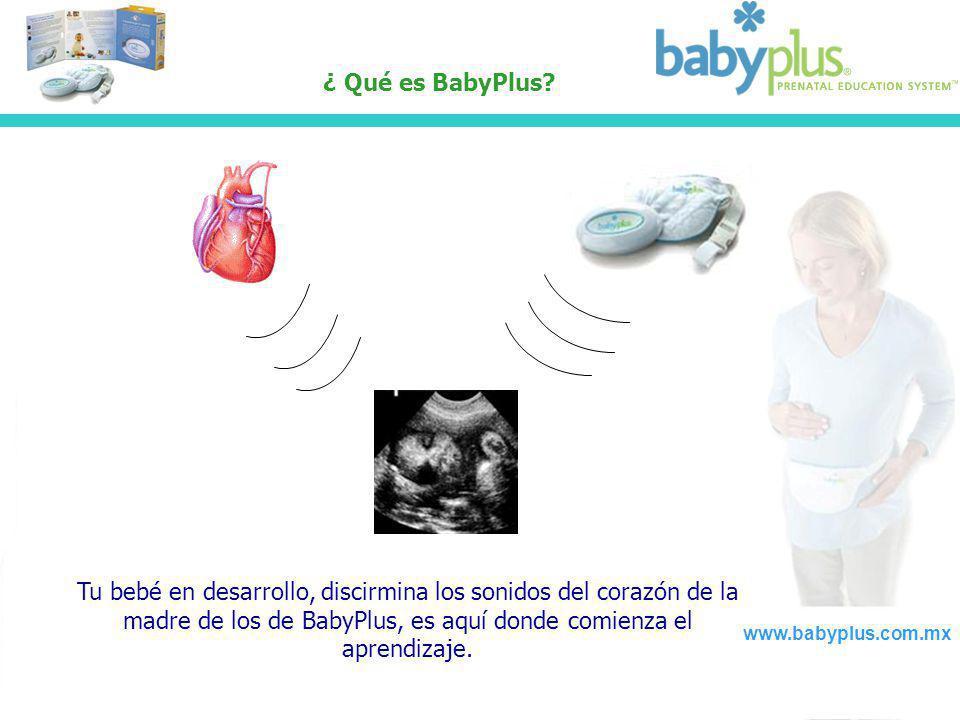 ¿ Qué es BabyPlus Tu bebé en desarrollo, discirmina los sonidos del corazón de la madre de los de BabyPlus, es aquí donde comienza el aprendizaje.