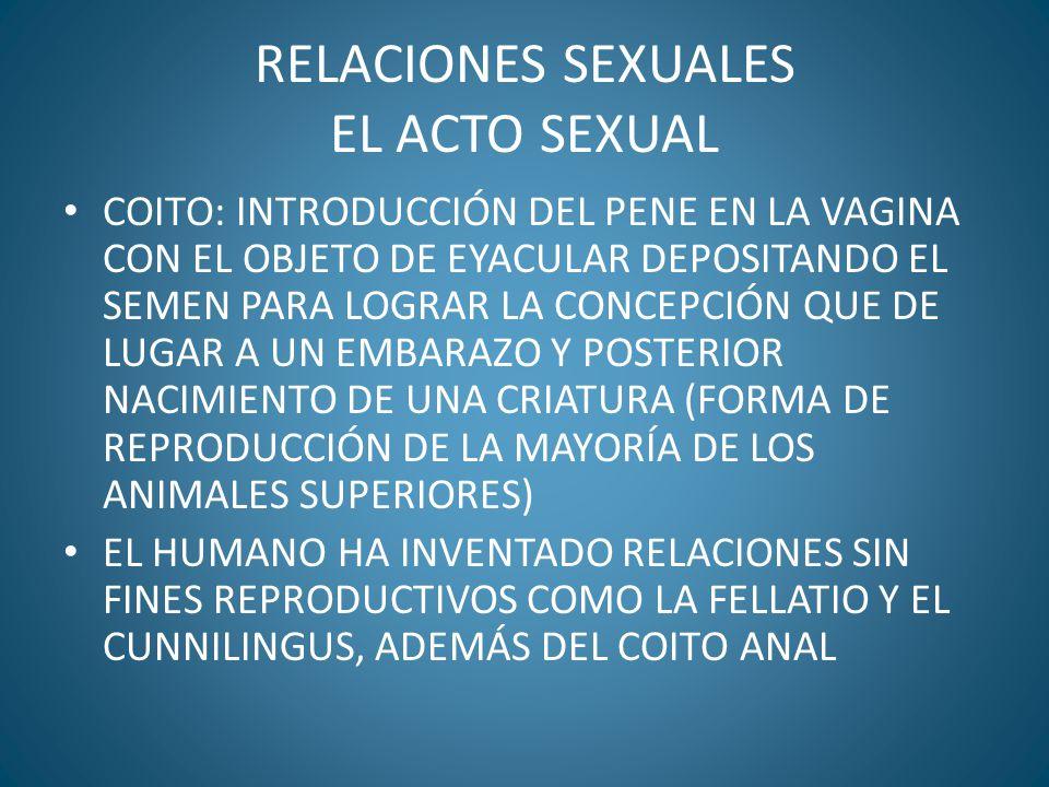 RELACIONES SEXUALES EL ACTO SEXUAL