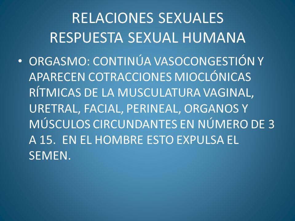 RELACIONES SEXUALES RESPUESTA SEXUAL HUMANA
