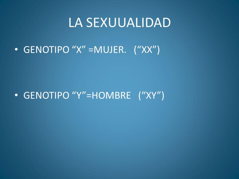 LA SEXUUALIDAD GENOTIPO X =MUJER. ( XX ) GENOTIPO Y =HOMBRE ( XY )