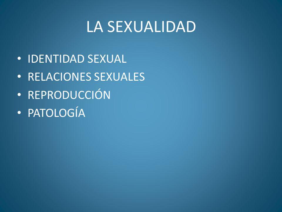 LA SEXUALIDAD IDENTIDAD SEXUAL RELACIONES SEXUALES REPRODUCCIÓN