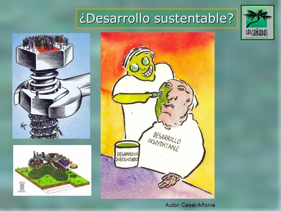 ¿Desarrollo sustentable