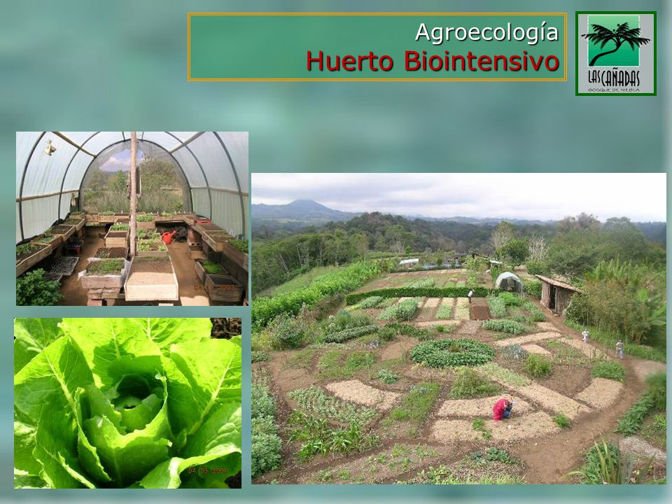Agroecología Huerto Biointensivo