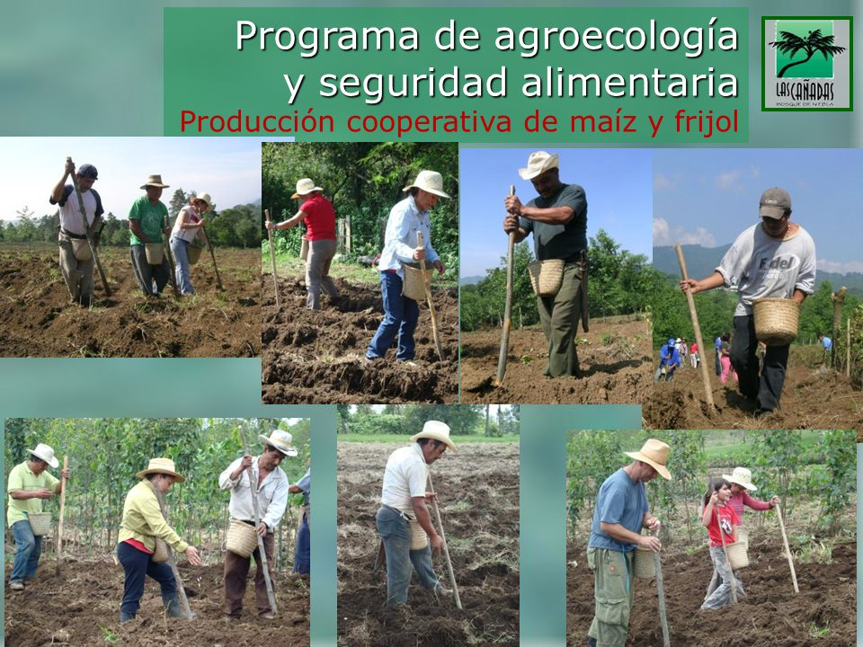 Programa de agroecología y seguridad alimentaria