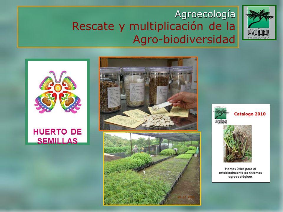 Rescate y multiplicación de la Agro-biodiversidad