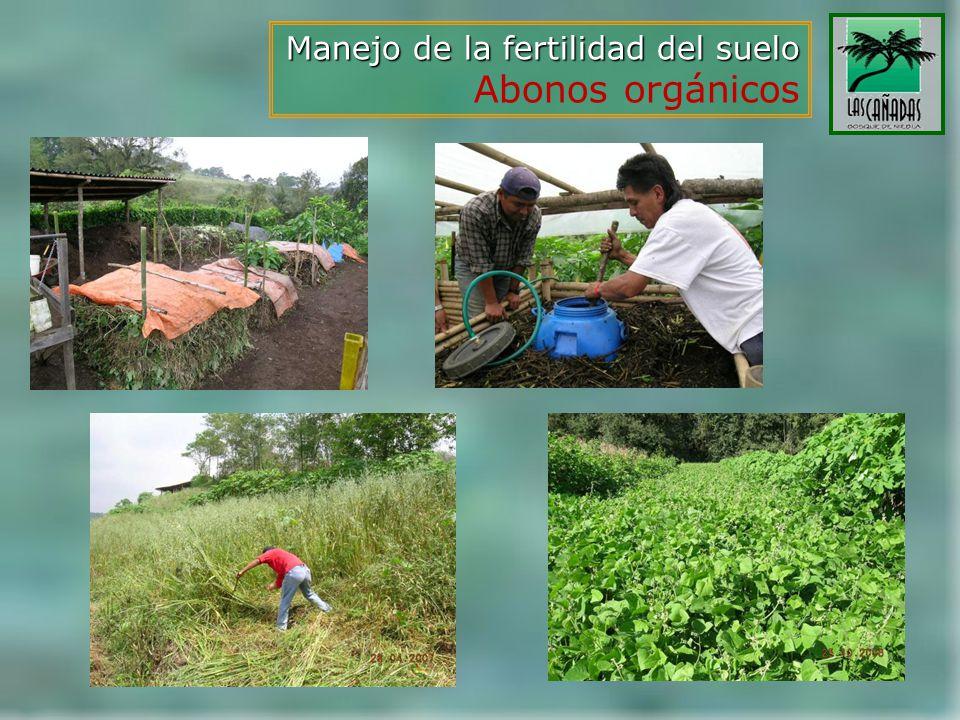 Manejo de la fertilidad del suelo