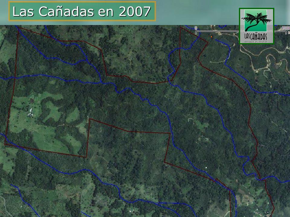 Las Cañadas en 2007
