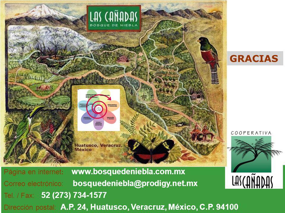 GRACIAS Página en internet: www.bosquedeniebla.com.mx