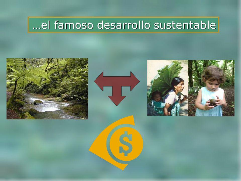 …el famoso desarrollo sustentable