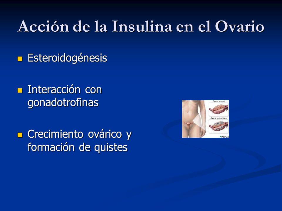 Acción de la Insulina en el Ovario