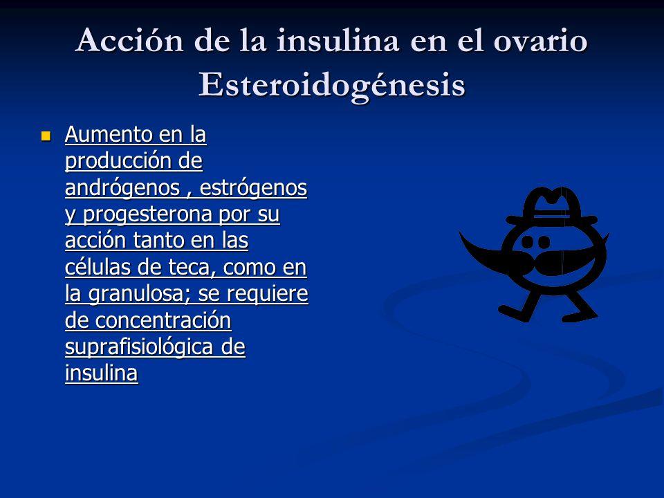 Acción de la insulina en el ovario Esteroidogénesis