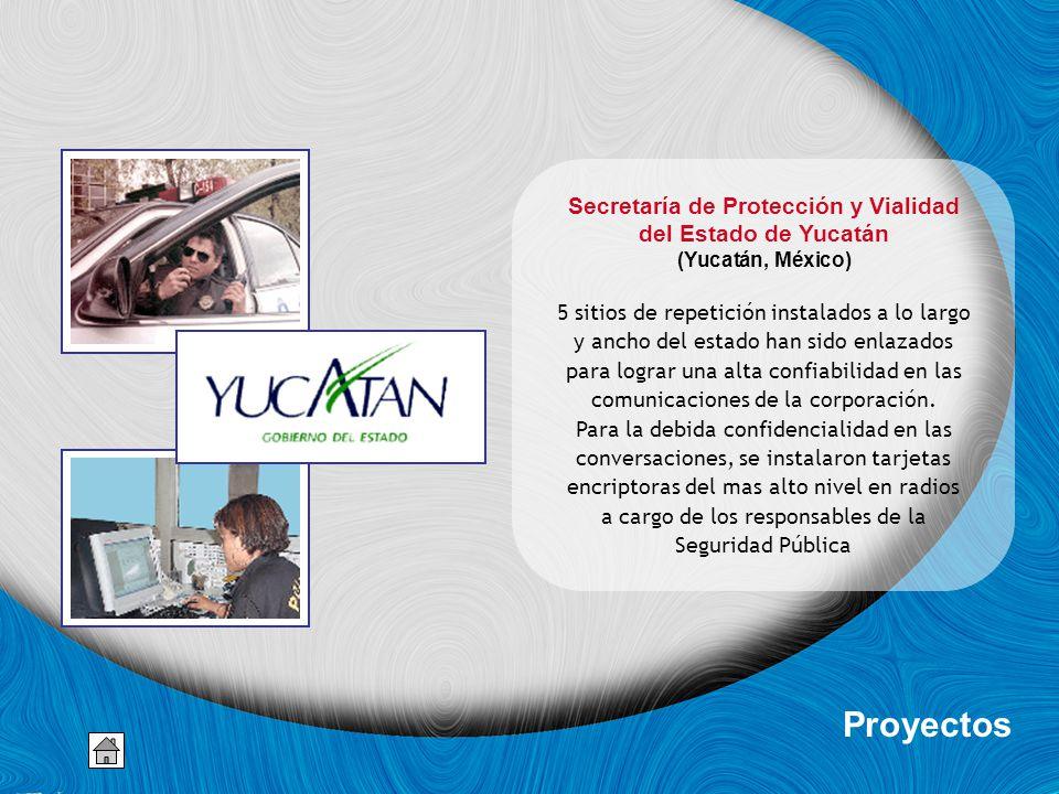 Secretaría de Protección y Vialidad
