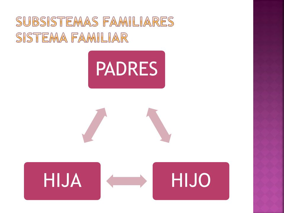 SUBSISTEMAS FAMILIARES SISTEMA FAMILIAR