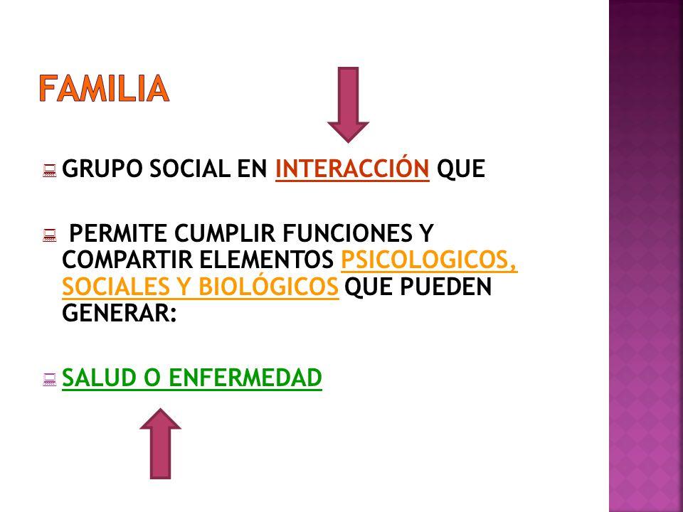FAMILIA GRUPO SOCIAL EN INTERACCIÓN QUE