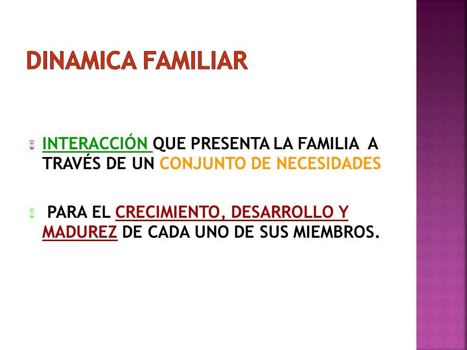 DINAMICA FAMILIAR INTERACCIÓN QUE PRESENTA LA FAMILIA A TRAVÉS DE UN CONJUNTO DE NECESIDADES.
