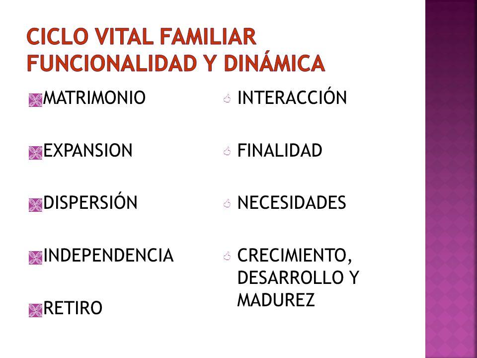 CICLO VITAL FAMILIAR funcionalidad y dinámica
