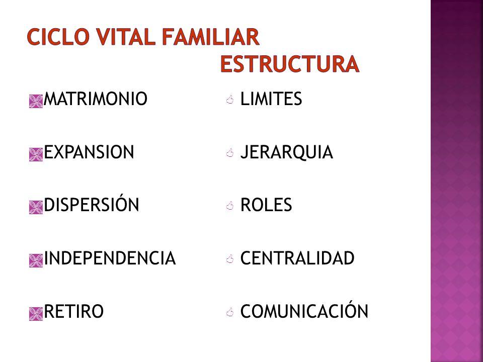 CICLO VITAL FAMILIAR ESTRUCTURA