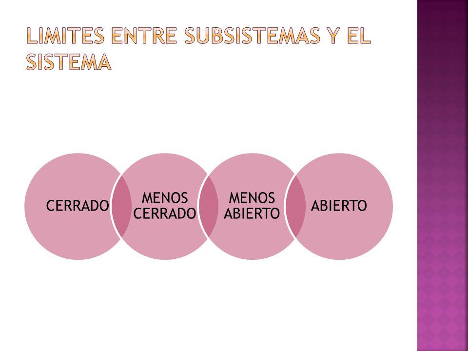 LIMITES ENTRE SUBSISTEMAS Y EL SISTEMA