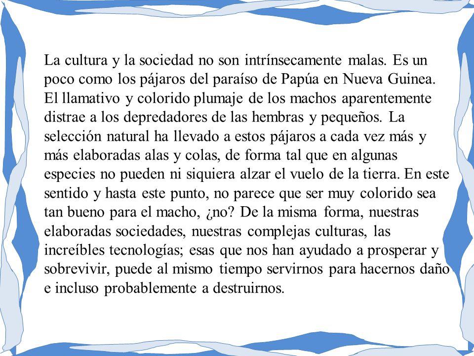 La cultura y la sociedad no son intrínsecamente malas