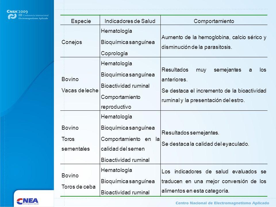 Especie Indicadores de Salud. Comportamiento. Conejos. Hematología. Bioquímica sanguínea. Coprología.