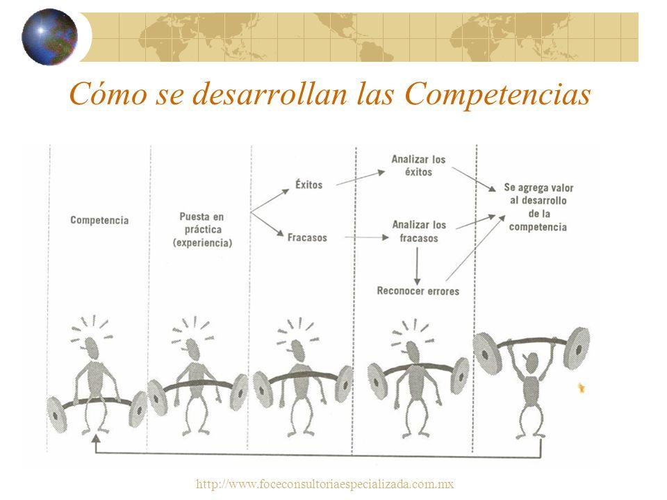 Cómo se desarrollan las Competencias
