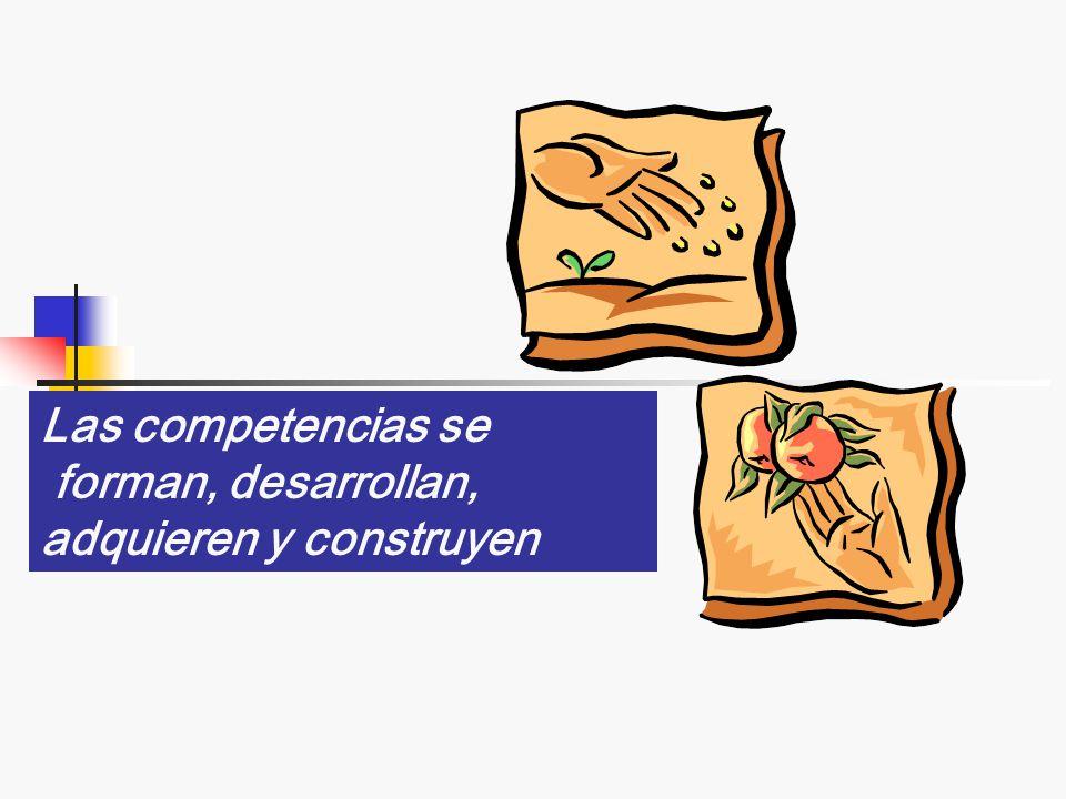 Las competencias se forman, desarrollan, adquieren y construyen