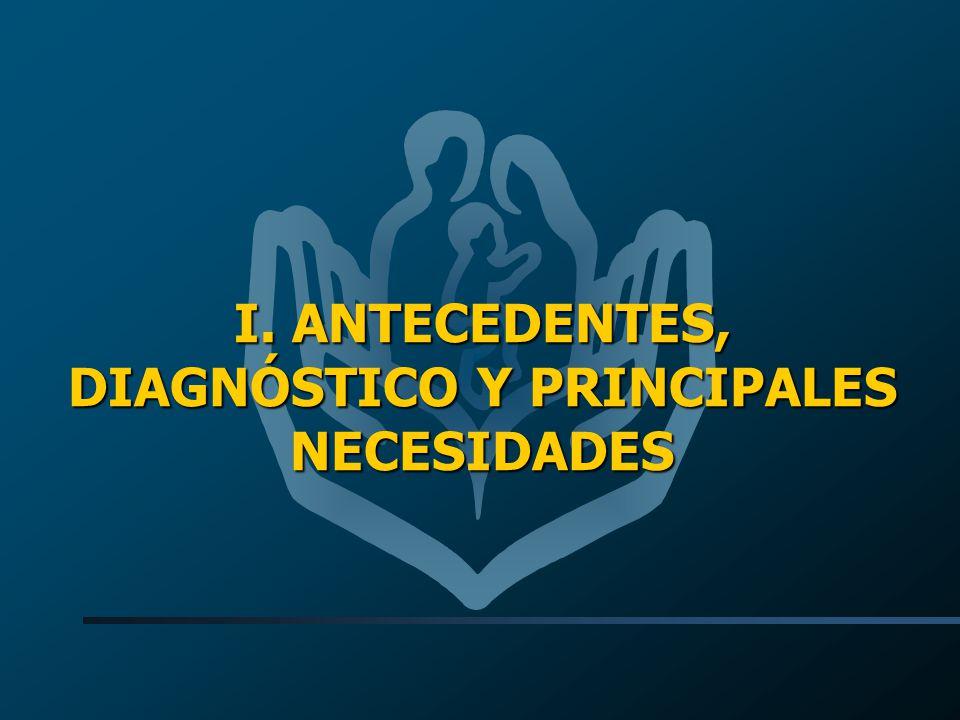 I. ANTECEDENTES, DIAGNÓSTICO Y PRINCIPALES NECESIDADES
