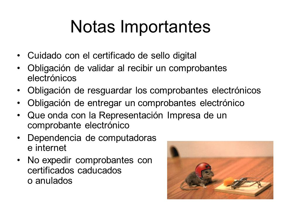 Notas Importantes Cuidado con el certificado de sello digital