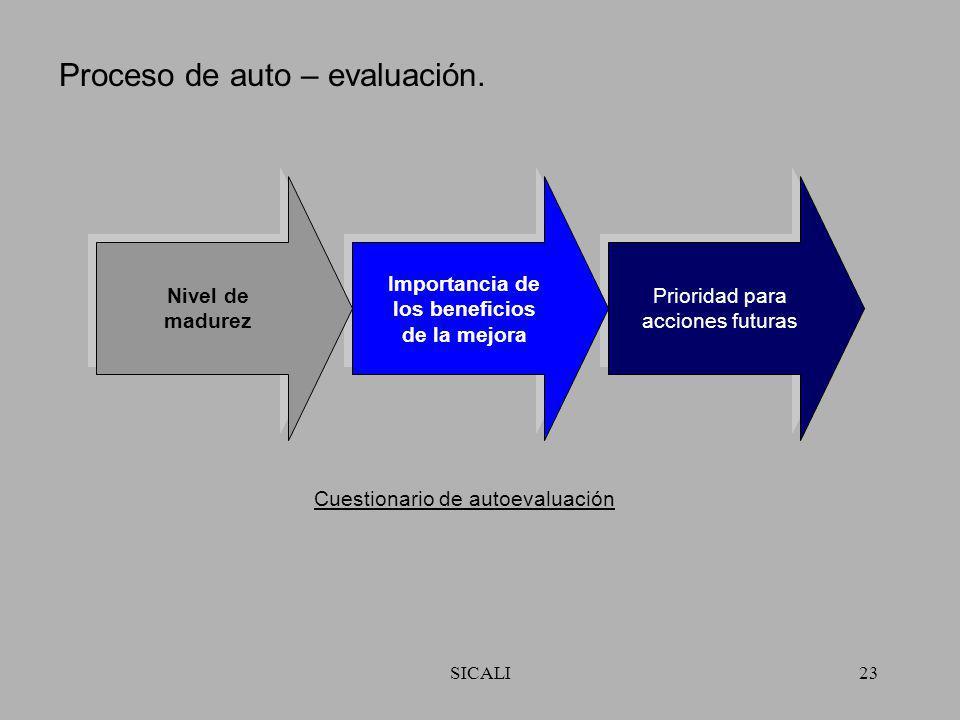 Proceso de auto – evaluación.