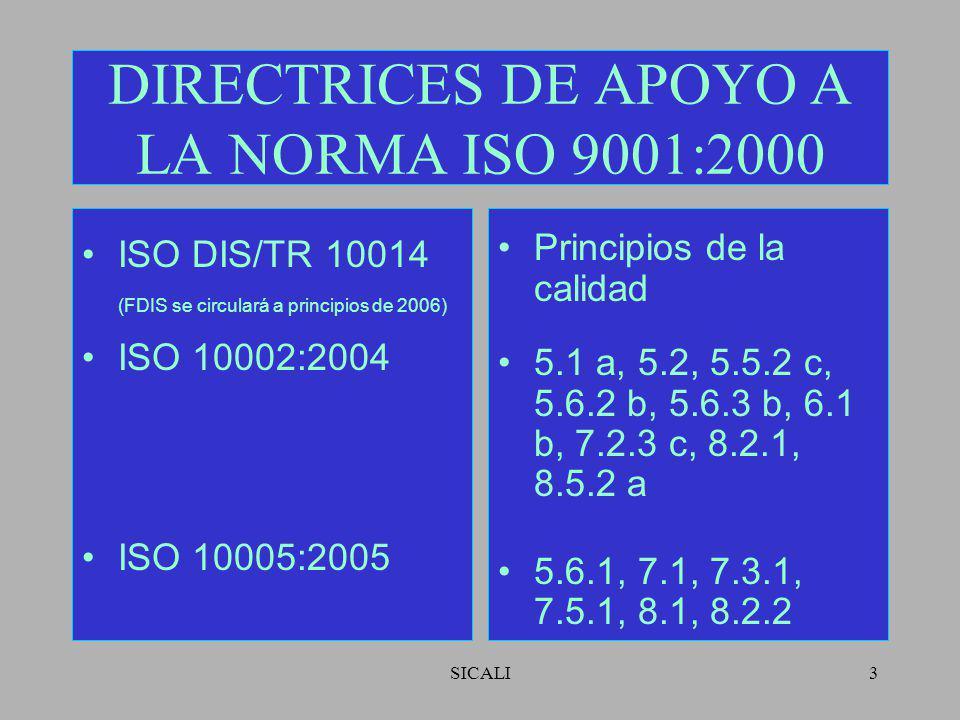 DIRECTRICES DE APOYO A LA NORMA ISO 9001:2000