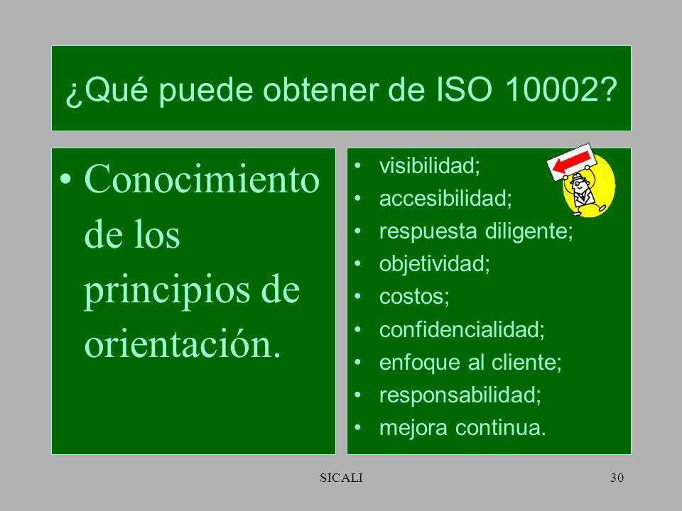 ¿Qué puede obtener de ISO 10002