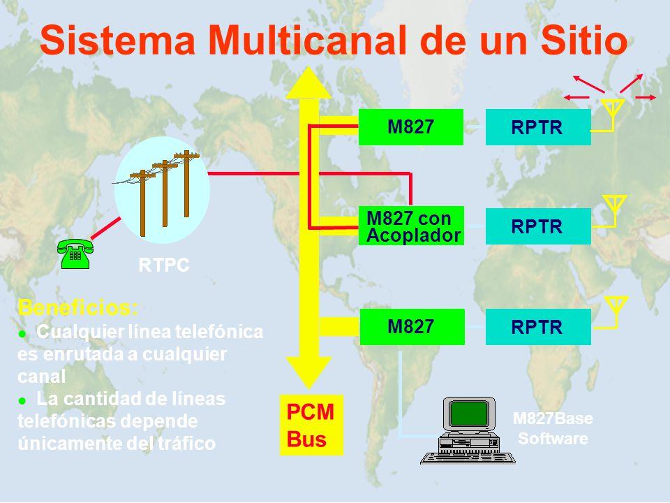 Sistema Multicanal de un Sitio