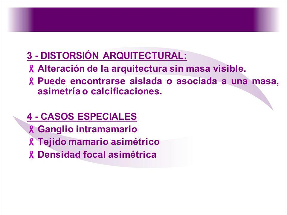 3 - DISTORSIÓN ARQUITECTURAL: